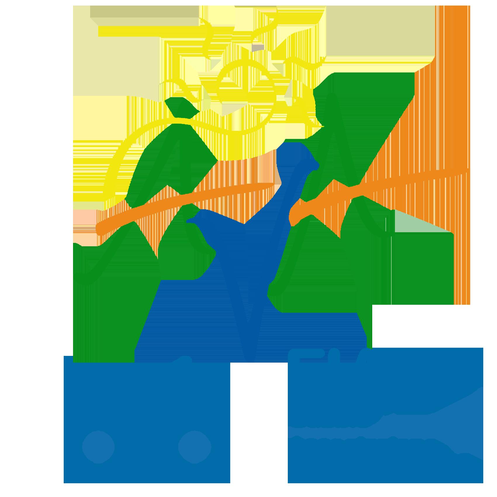AVA Logo2